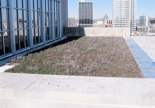Lincoln Financial Group Green Roof